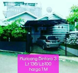 Kuricang, Bintaro Sektir 3