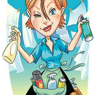 Home express cleaning services