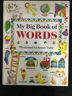 My Big Book of Words