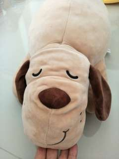 Fluffy Hugging dog