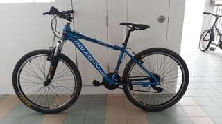 Raliegh MTB LETTING GO FOR A LOW PRICE