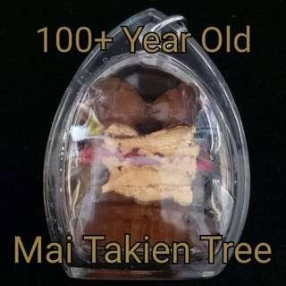 Ying Tong Mai Takien - Thai Amulet