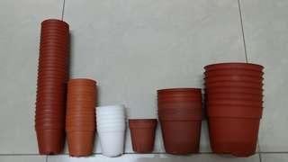 3 sizes plastic pots (69 pots)