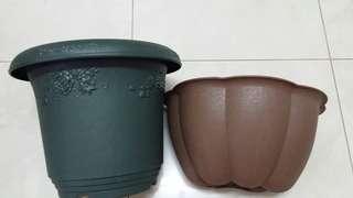 Green pot & Wall Hanging flowerpot
