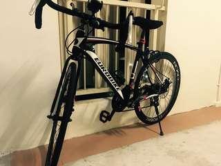 Eurobike road bicycle