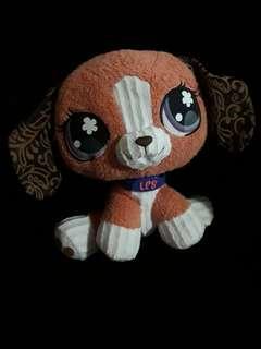 LPS beagle
