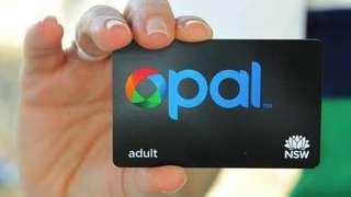 Opal card x 3