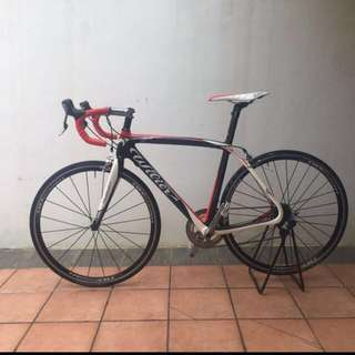 Wilier Triestina Dura Ace Full Carbon Bike!