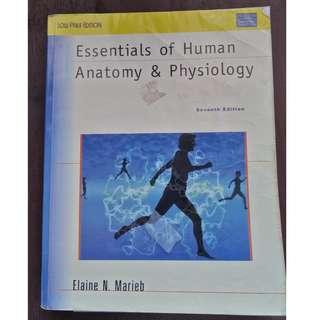 Essentials of Human Anatomy & Physiology (7th Edition) BY Elaine N. Marieb