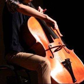 Beginner to advanced Cello lessons