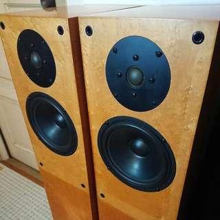Focus Audio floorstand.