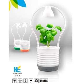 🚚 全新半價!! LED盆栽🌱