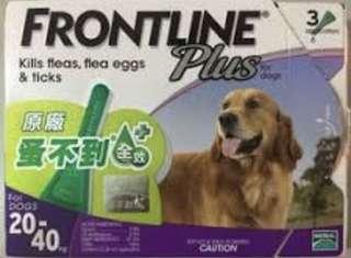 🚚 蚤不到大型犬專用20-40kg