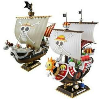 🚚 One piece ship sunny or merry