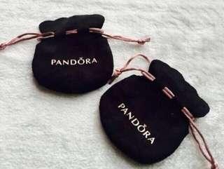 Pandora pouch