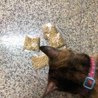 🚚 貓草種子 一包20G 天然化毛膏 貓咪最愛