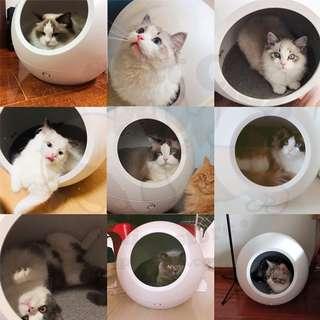 Petkit Cozy (Cool+Warm) Smart Pet House 智能冷暖寵物窩