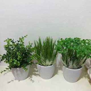 Cute artificial plants