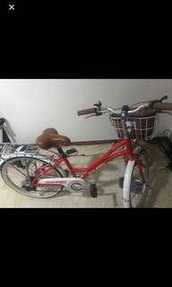 Raleigh unisex ladies men's aesthetic bike venice 90's