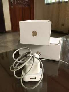 Apple lightning cable and adapter