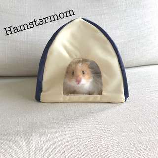 Cute Hamster Pop-up Tent Hideout House