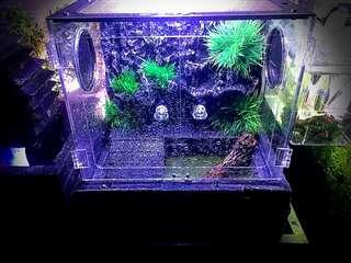 3D enclosure waterfall tank