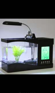 LED MINI FISH TANK! PREORDER ONLY!