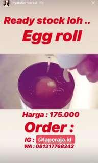 Egg roll ( telor gulung )