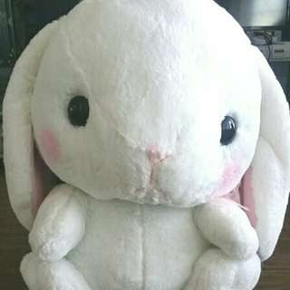 Jumbo Amuse Plush Pote Usa Bunny