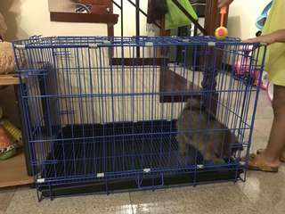 Foldable dog cage
