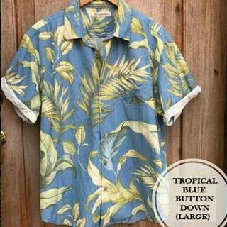 Tropical Blue Summer Palm Hawaiian Buttondown