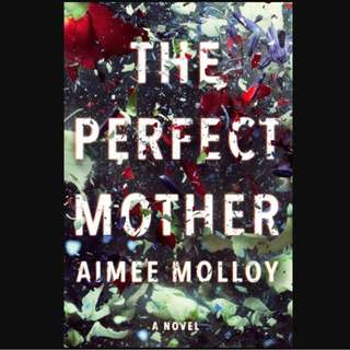 (Ebook) The Perfect Mother  by Aimee Molloy