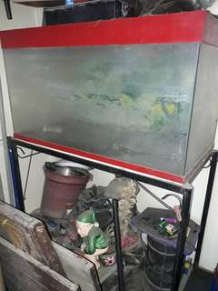 Used Aquariun 50g with Steel Stand