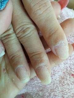 Express Gel nail