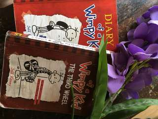 Diary of a Wimpy Kid — 1st Book & The Third Wheel