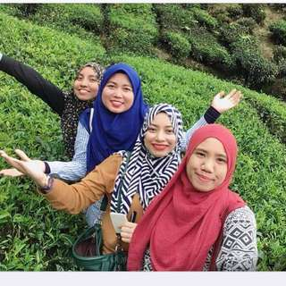 Pakej Cameron Highland Day Trip (from KL Sentral)