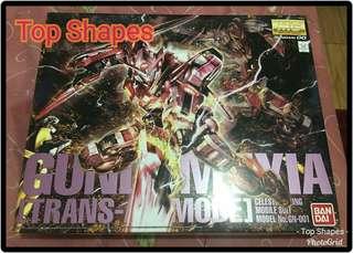 Gundam Exia (MG)