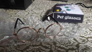 PET GLASSES (GOLD)