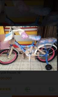 wim cycle frozen 16'