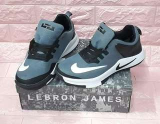 Lebron shoes for him