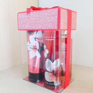 Bath & Body Works (Gift Set)