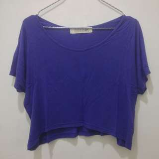Tigerlily Blue Cropped Top