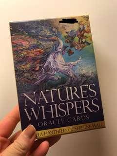 天使牌 Nature's Whisper 愛情 占卜 抽牌 塔羅