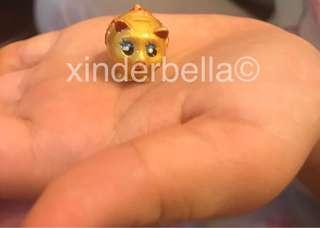 Miniature Golden Pigs