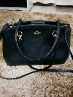 REPRICED !Coach carryall Large