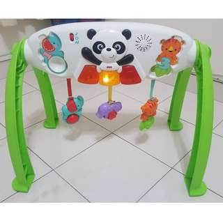 Fisher-Price Grow-With-Me Gym