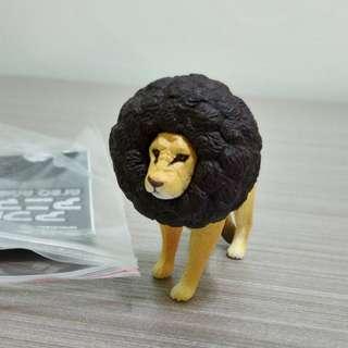 🚚 爆炸頭獅子