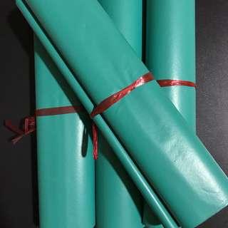 (25*35) green polymailer
