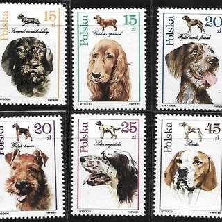 波蘭郵票 1988年 動物 狗 犬 6全新