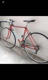 Red Motioncraft Steel Bike